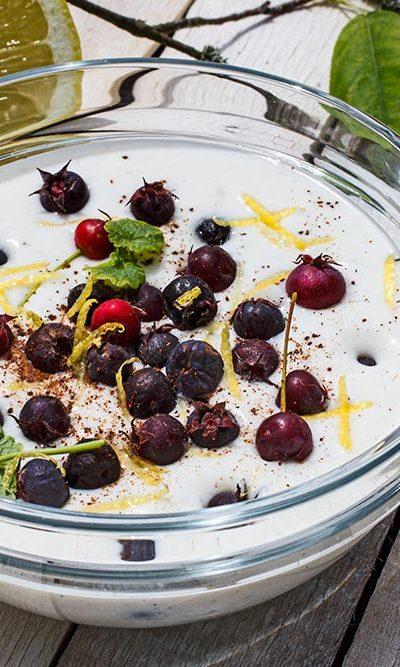 Felsenbirnen-Joghurt mit Gundermann